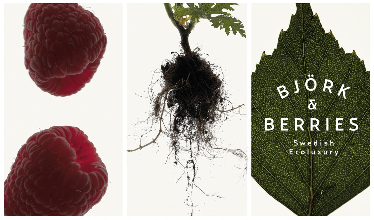 Björk & Berries